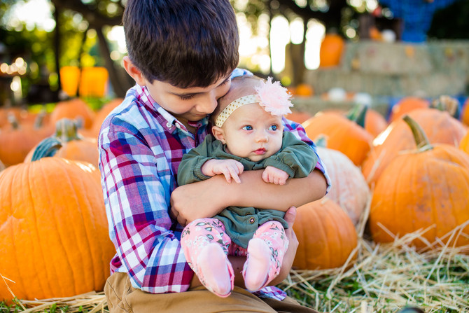 Pumpkin Patch Mini Sessions 2017