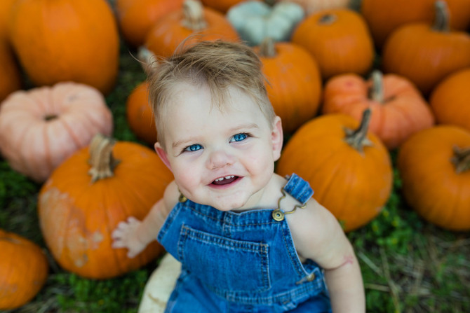 Pumpkin Patch Mini Sessions 2019