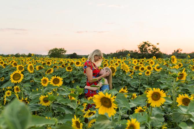 Sunflower Mini Sessions 2021| San Antonio Family Photographer