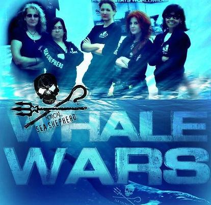 whale wars.JPG