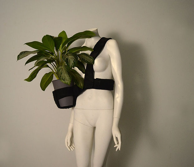 Wearable Plant 1
