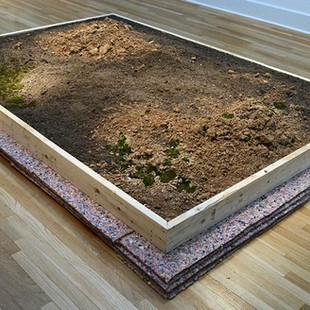 Simulated Landscape For Public View (GA)