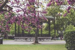 Parque Inglés