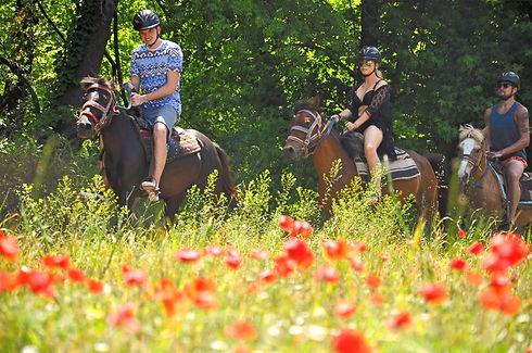 PINAR HORSE SAFARI Puzzle Seyahat Tur. Tic. Ltd. Sti info@pinarhorsesafari.com www.horsesafarimarma