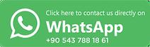Horse Safari Marmaris Whatsapp +905437881861