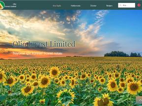 olioinvest.com