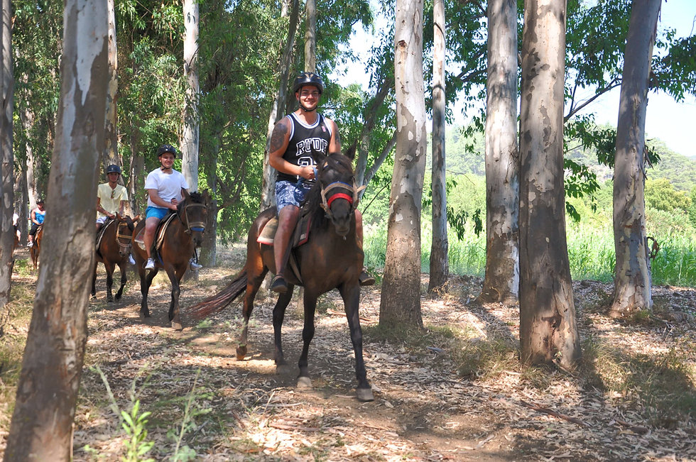 How do you arrange our Marmaris Horse Safari excursion ?