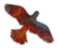 Featherglider Logo no outline.png