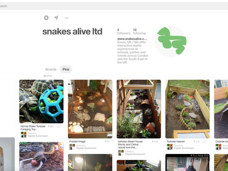 snakes alive uk now on Pinterest!