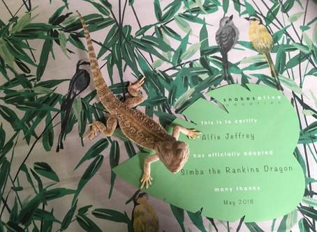 Rankins Dragon Adoption