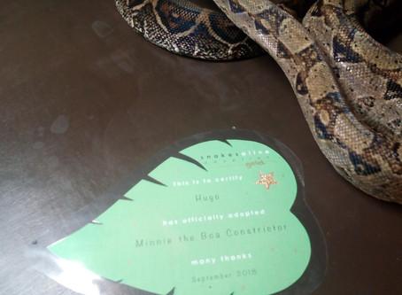 Snake Adoption