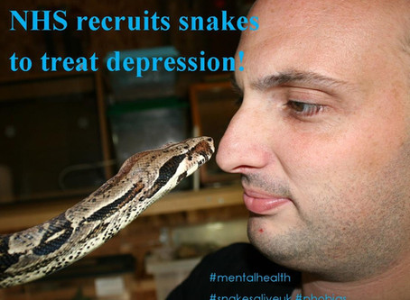 """""""Snakes are being used as animal """"therapists"""" by the NHS to treat depression."""