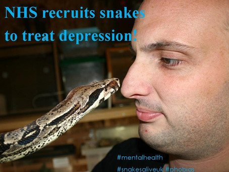 """Snakes are being used as animal ""therapists"" by the NHS to treat depression."
