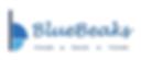 PARTNERS—BlueBeaks.png