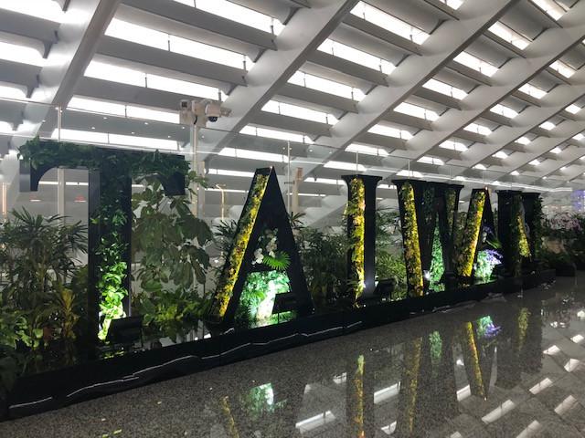 台湾桃園国際空港/Taiwan Taoyuan International Airport
