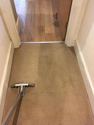 Carpet Hygiene - rYAN.jpg
