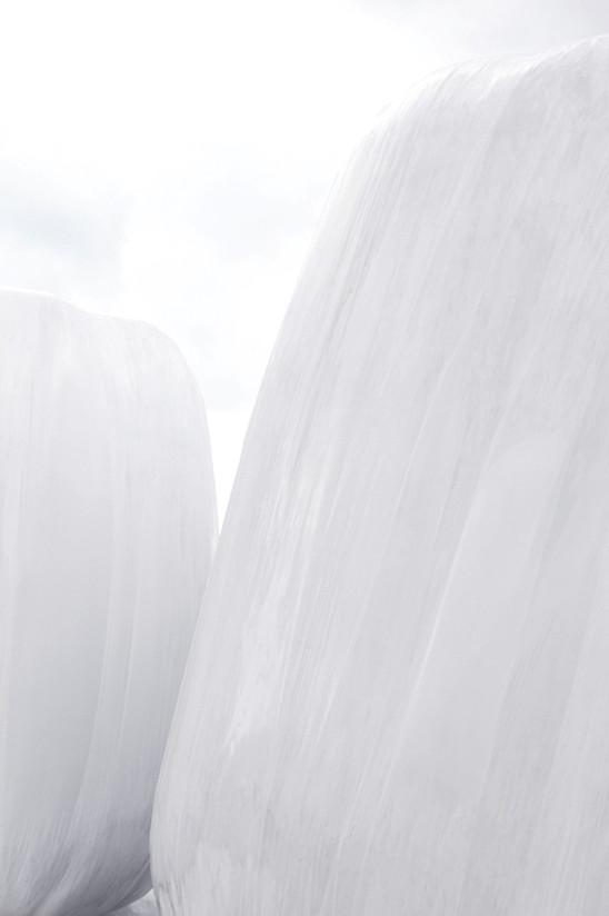 Deux blanches et le ciel