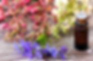 fleur de baxhx 3.jpg