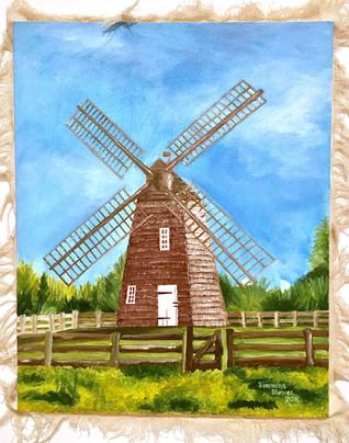 Ragged Windmill