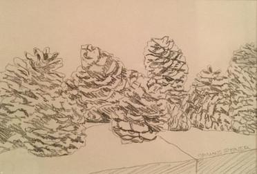 Desert Cones