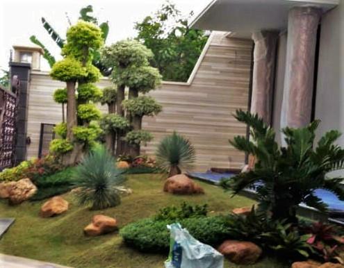 Rental Tanaman dan Perawatan Taman