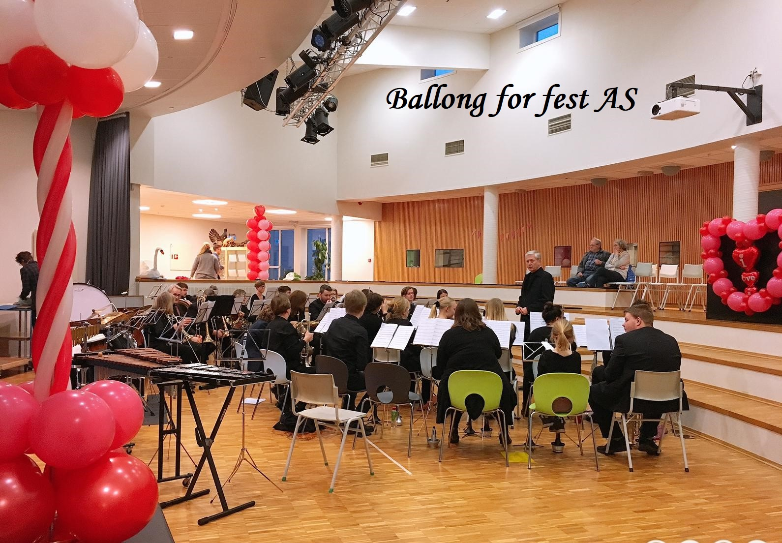 Ballong for fest (9)