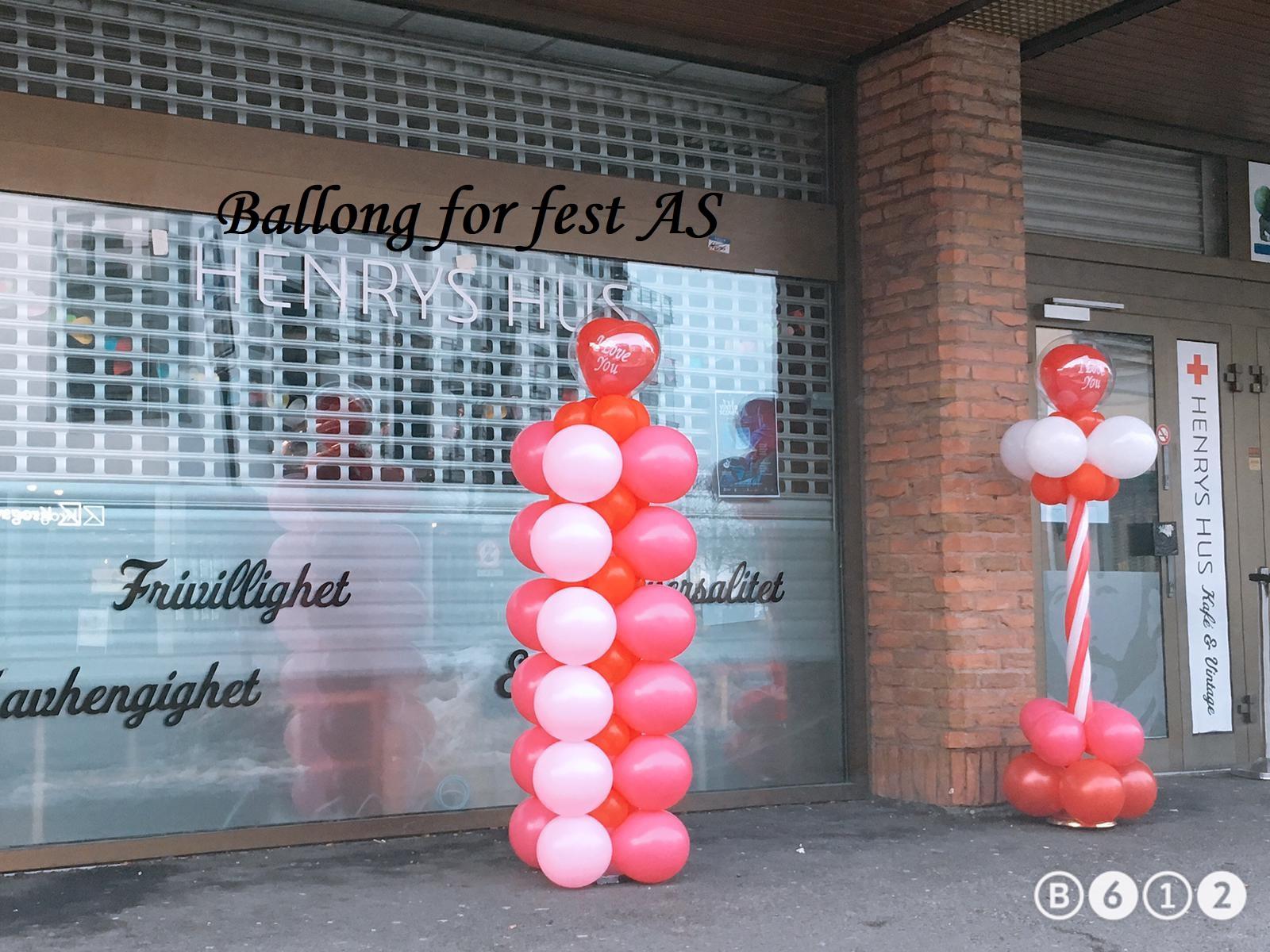 Ballong for fest (7)