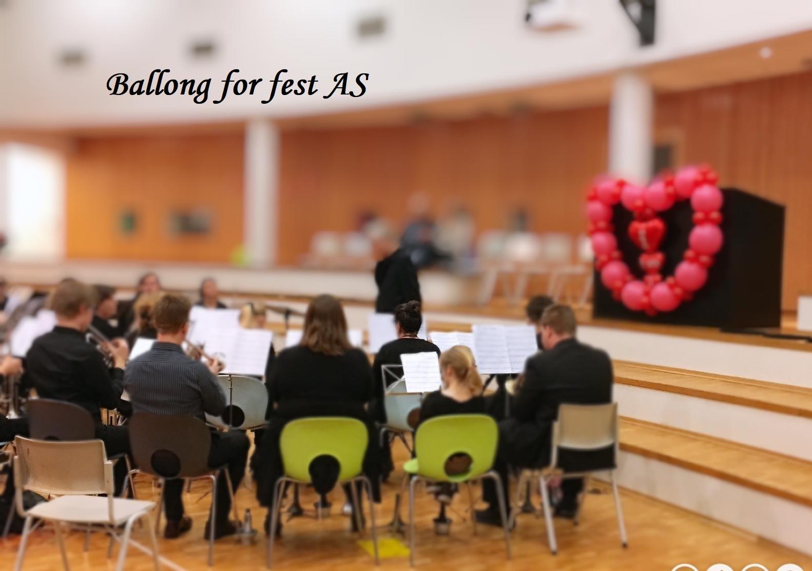 Ballong for fest (10)