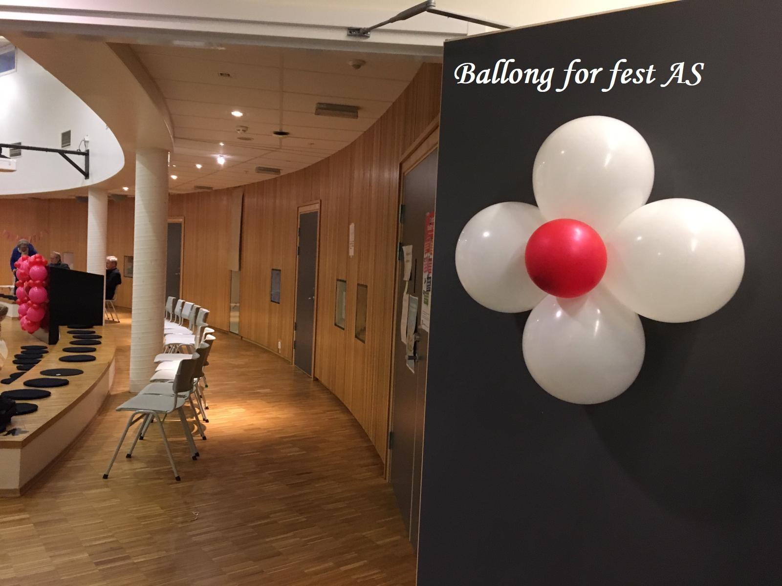 Ballong for fest (12)