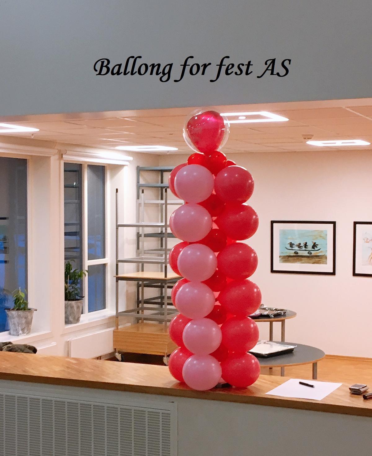 Ballong for fest (8)