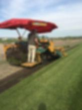 Kurtz Turf Farm cutting sod