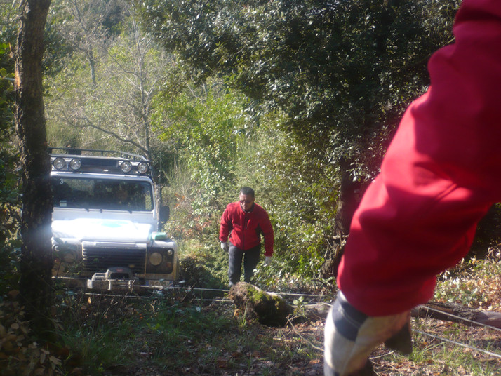 Titignano 2010 (12).JPG