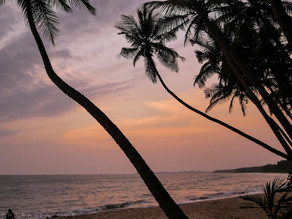 The Best Ways to Plan Your Kerala Holiday