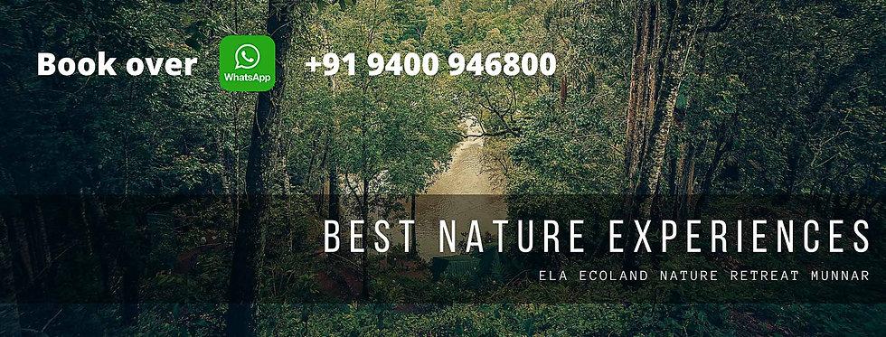 Ela Ecoland  cover.jpg