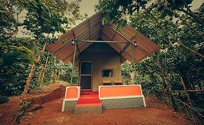 Luxury tents at Ela Ecoland