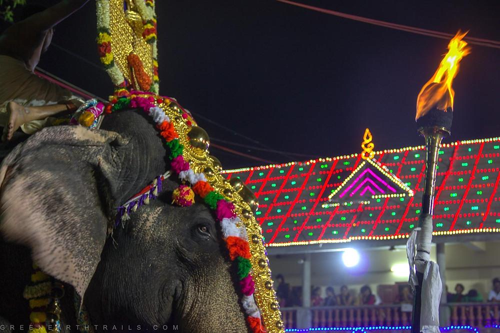 Elephant procession at Arattupuzha Pooram