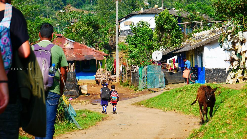 The Village Yelapetty Munnar