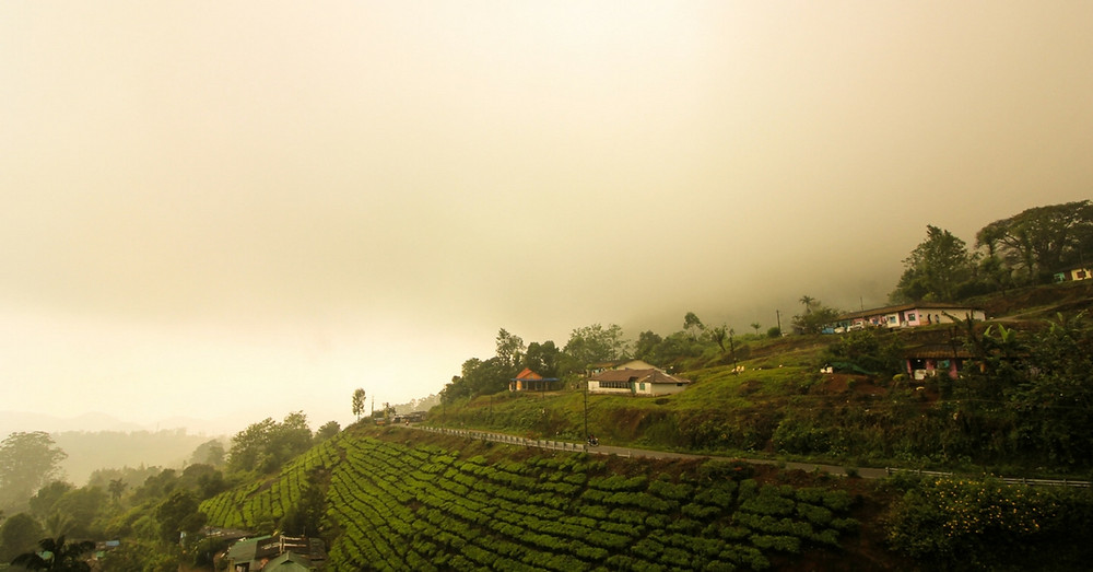 The hill station of Munnar