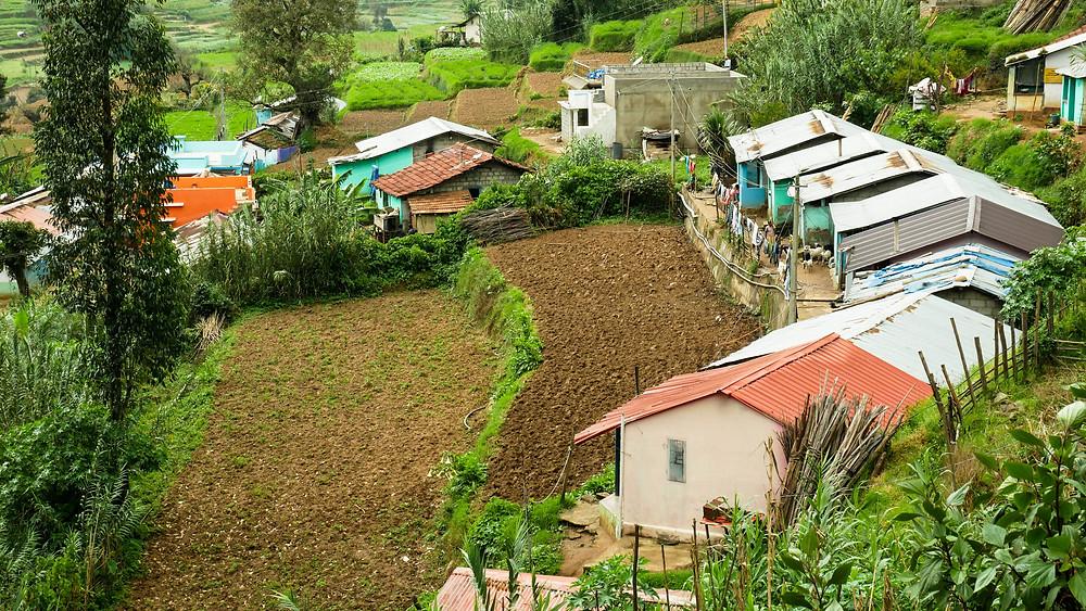 Koviloor Village Munnar
