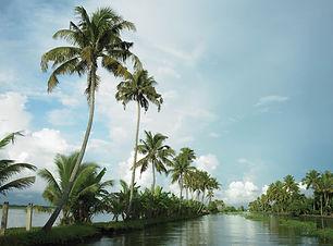 Alleppey Backwaters.jpg