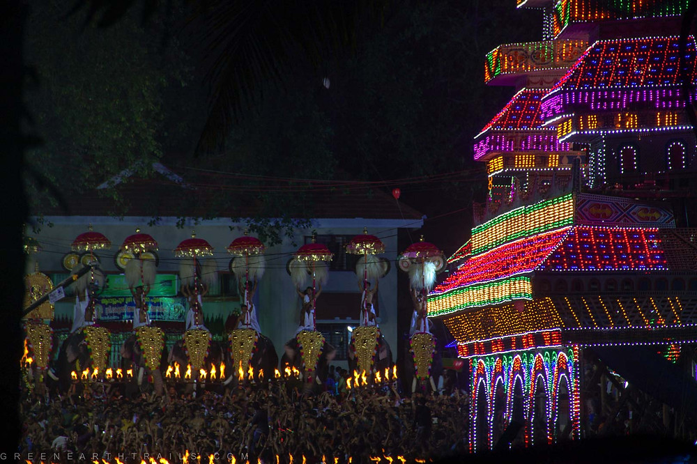 Arattupuzha Pooram Celebration