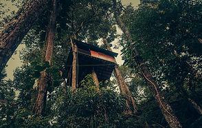Tree House at Ela Ecoland