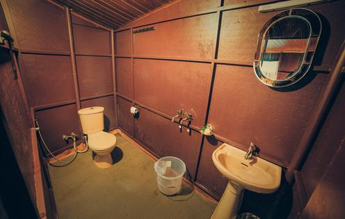 Tree House Bathroom