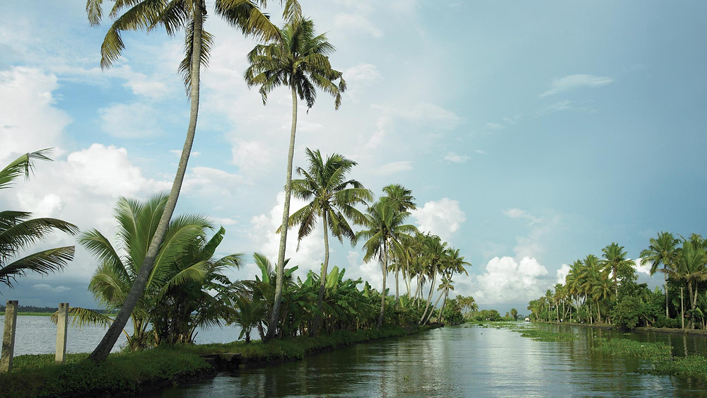 The backwaters of Alleppey