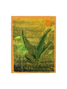 Untitled (House plant)