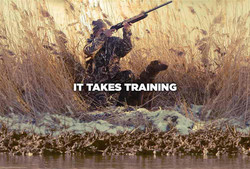 Right training for the right task