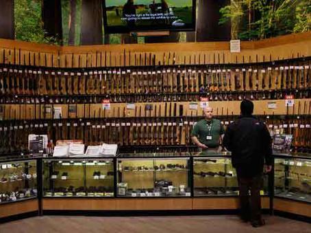 What to get first? Rifle/Shotgun or Handgun
