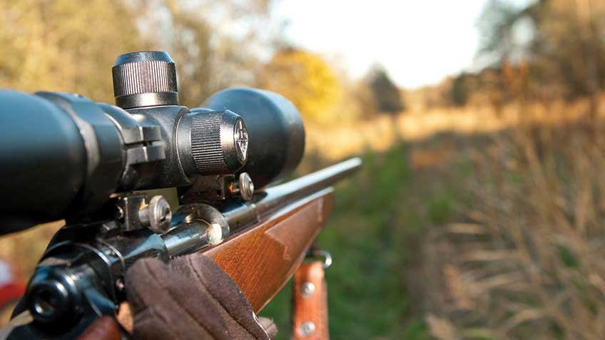 Rifle Shooting Course - Live Fire