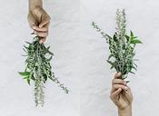 sprig of herbs - Menu.PNG