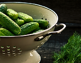 cucumber - Menu.PNG
